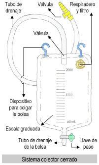 sistcolector1